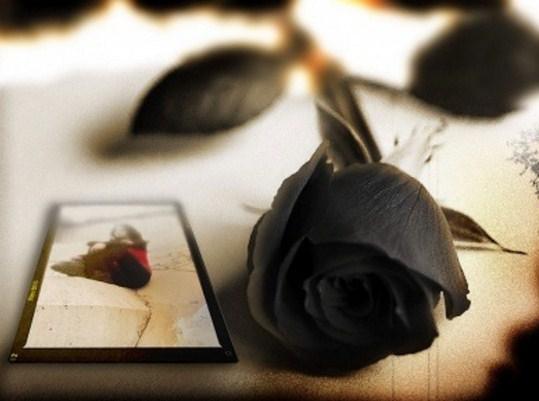 Rosas negras para luto