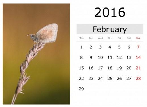 Calendarios febrero 2016 gratis para imprimir
