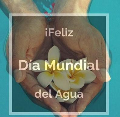 Feliz dia mundial del agua imagenes