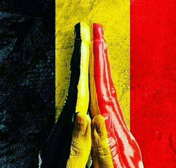 Imagenes apoyo a Bruselas 2016