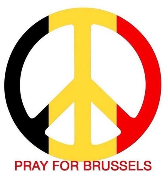 Paz en bruselas 2016