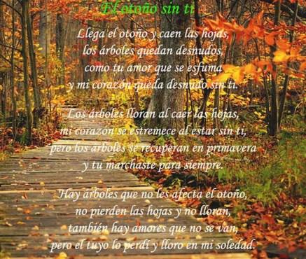 fotos de otoño con mensajes