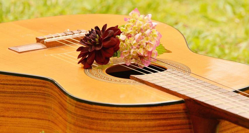 imagenes-de-instrumentos-musicales-de-cuerda