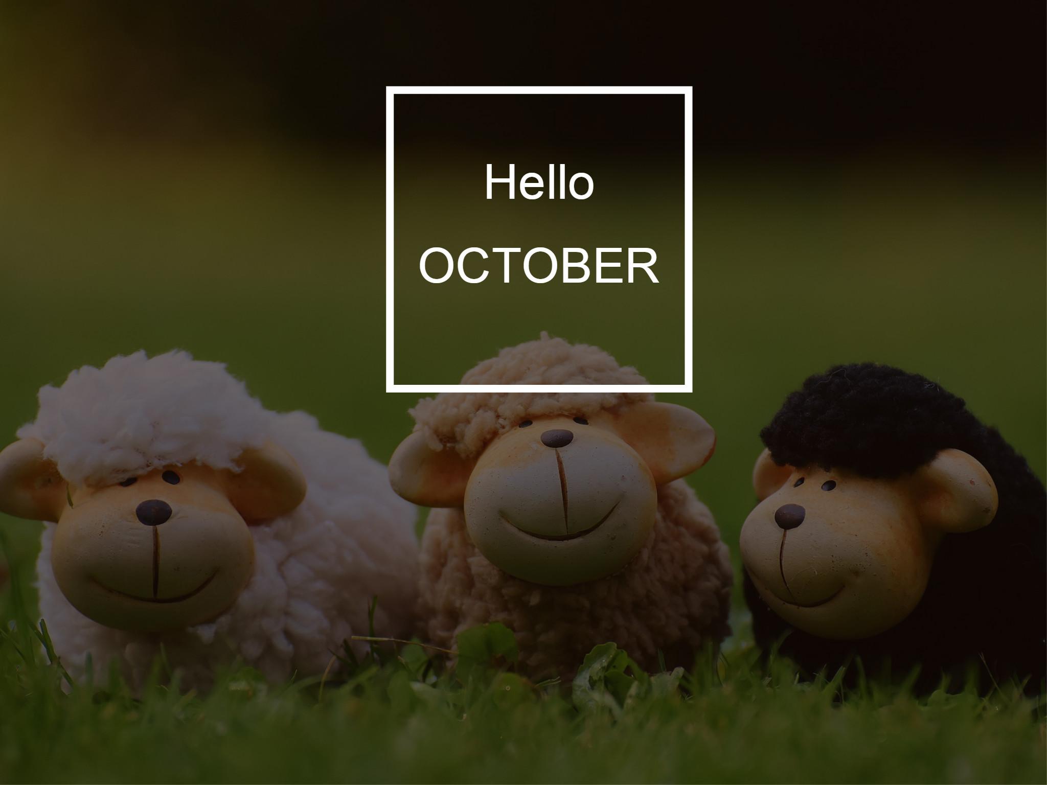 imagenes-de-octubre-tiernas