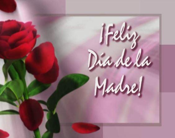 fotos-con-rosas-de-feliz-dia-de-las-madres