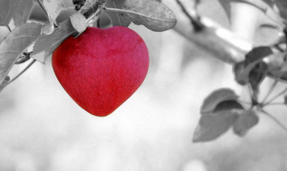 Imagenes de amor en blanco y negro