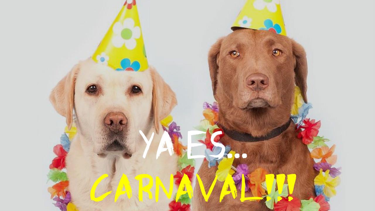 imagenes de carnaval para WhatsApp