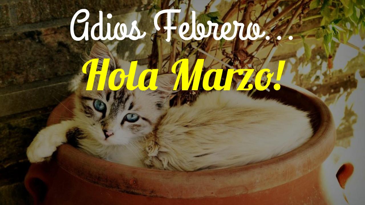 Hola Marzo imagenes