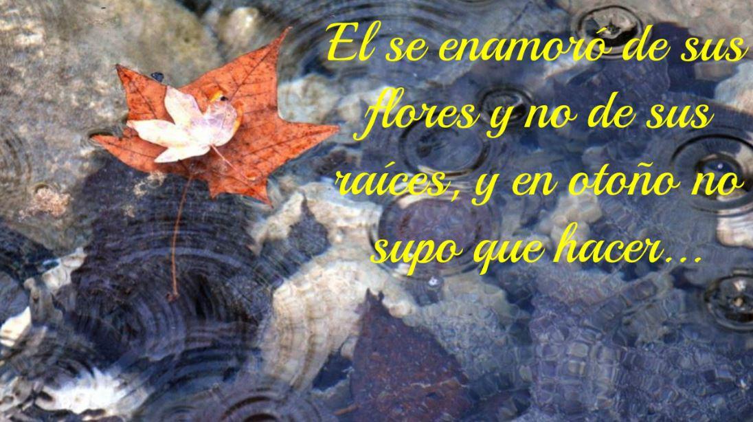 Imagenes de otoño con frases de amor