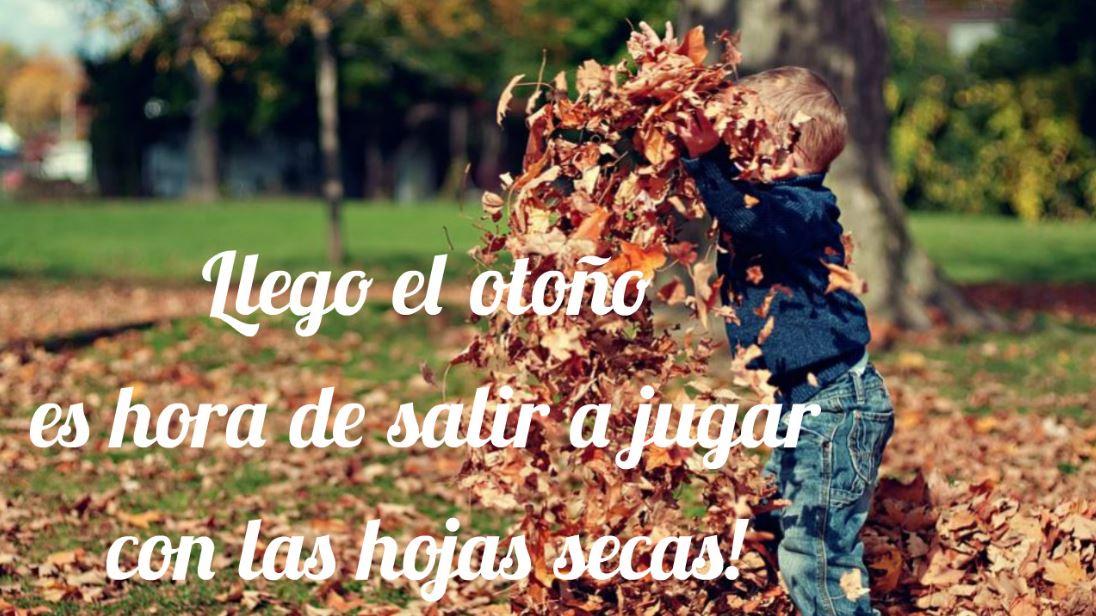 imágenes de otoño para niños
