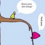 Chistes cortos de dietas